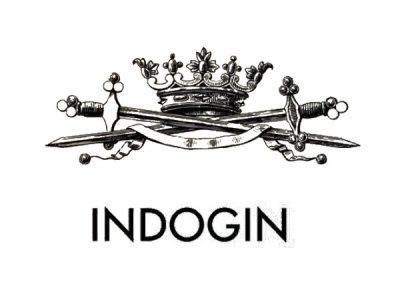 Indogin