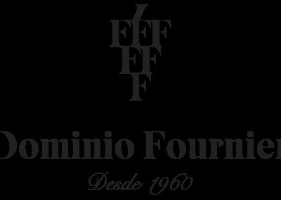 Dominio Fournier